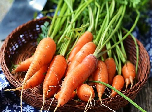 Mua cà rốt chất lượng tại Hà Nội