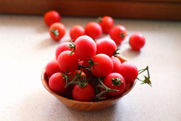 Top những loại hạt giống giá rẻ nhất, năng suất cao nhất nên trồng tại nhà