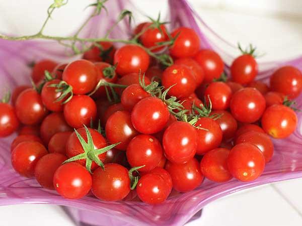 Bật mí những điều bạn chưa biết về cà chua bi