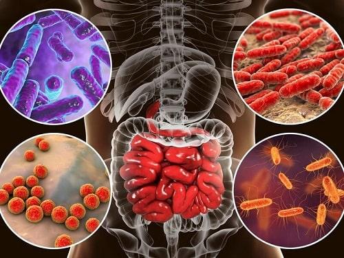 Tác dụng của cà chua bi Ngăn ngừa bệnh ung thư và một số căn bệnh mãn tính