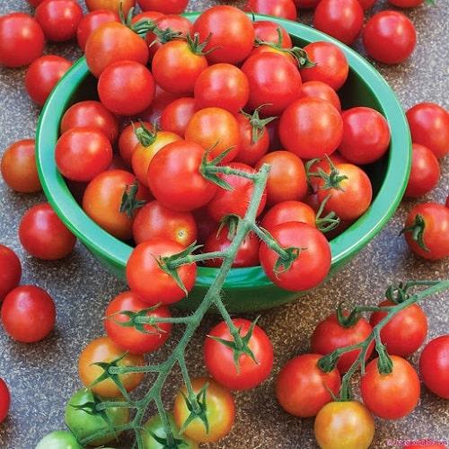 thành phần dinh dưỡng trong cà chua bi