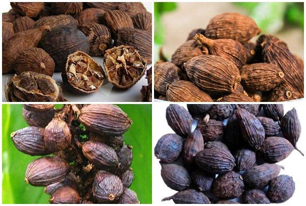 Thảo quả được dùng trong nhiều món ăn chữa bệnh