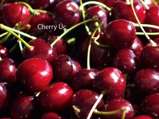 cach chon mua cherry uc