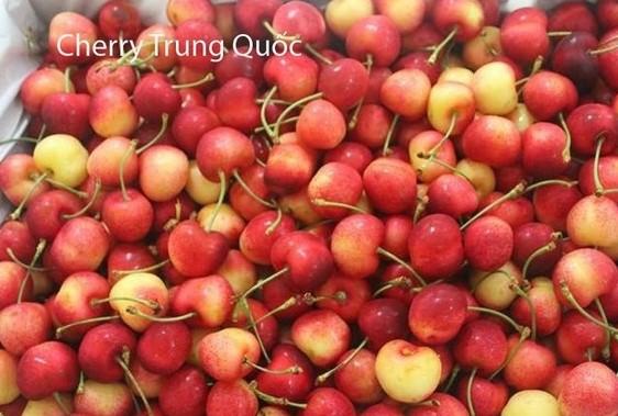 cherry trung quốc